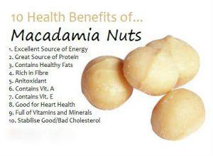855Sheller.com Nutcracker Nut Cracker Kenkel Drill Black Walnut Macadamia nut pecan cracking Blackwalnutcracker.com